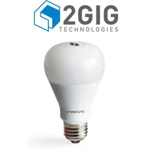 2 Gig Light bulb